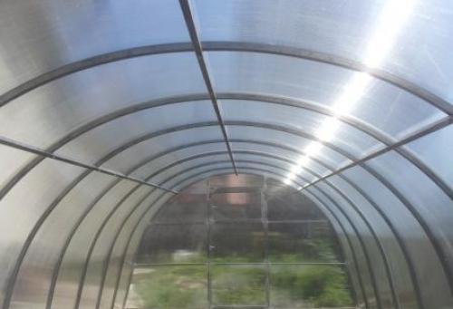 Теплица оцинкованная из усиленной трубы 25х25 6 метров